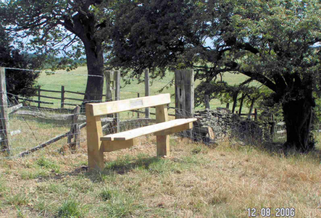 Many benches installed