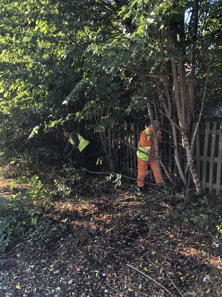 Work in Progress Welfare Grounds